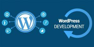 WordPress Development For Business Sites