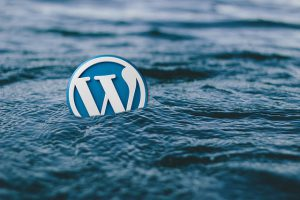 Some Important Points to Select Best WordPress Theme for Your Niche