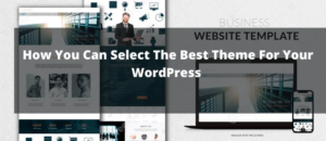 How You Can Select The Best Theme For Your WordPress