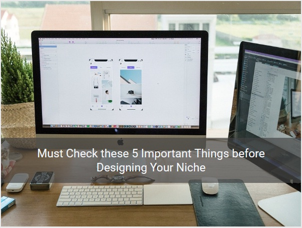 5 Important Things before Designing Your Niche