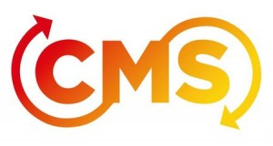 Factors To Contemplate Before Selecting A CMS